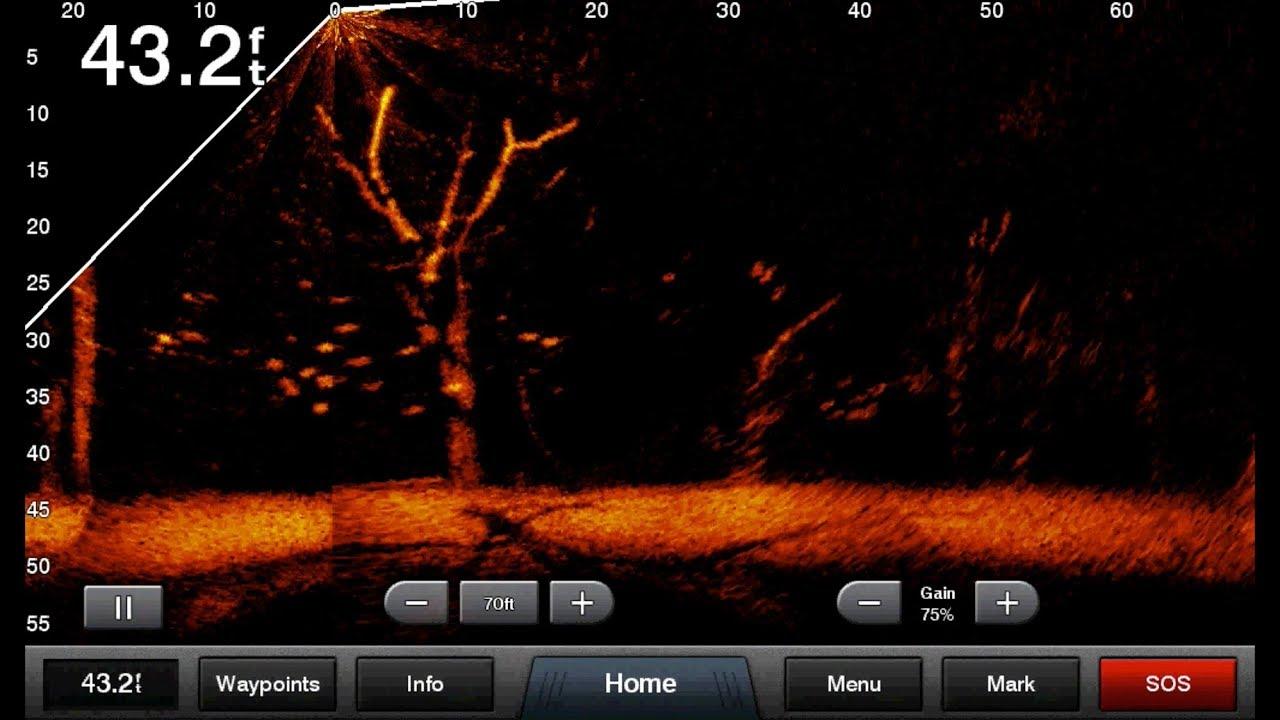 Garmin Panoptix LiveScope auf einem Echolot illustriert