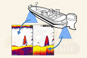 Lowrance Live Networking Sonar