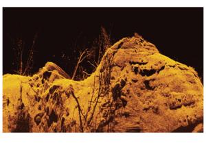 Humminbird Down Imaging mit Unterwasserstruktur