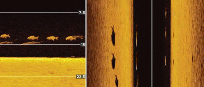 Beispiel für Humminbird MEGA Down und Side Imaging+