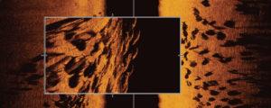 Beispiel für Humminbird MEGA Imaging+