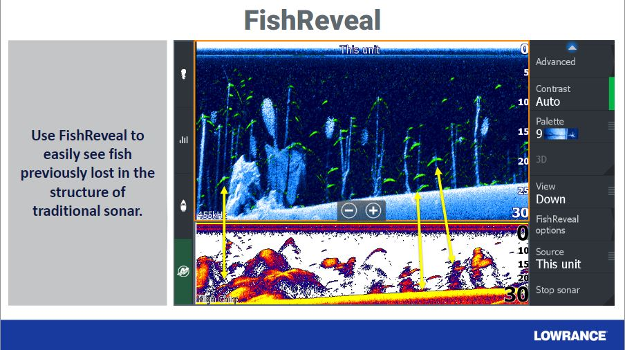 FishReveal Beispiel