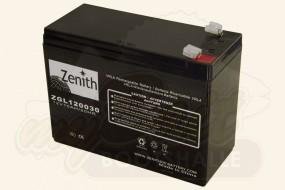 Zenith Echolot Akku 12V 10Ah